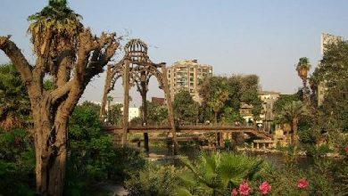 جزيرة الروضة القاهرة